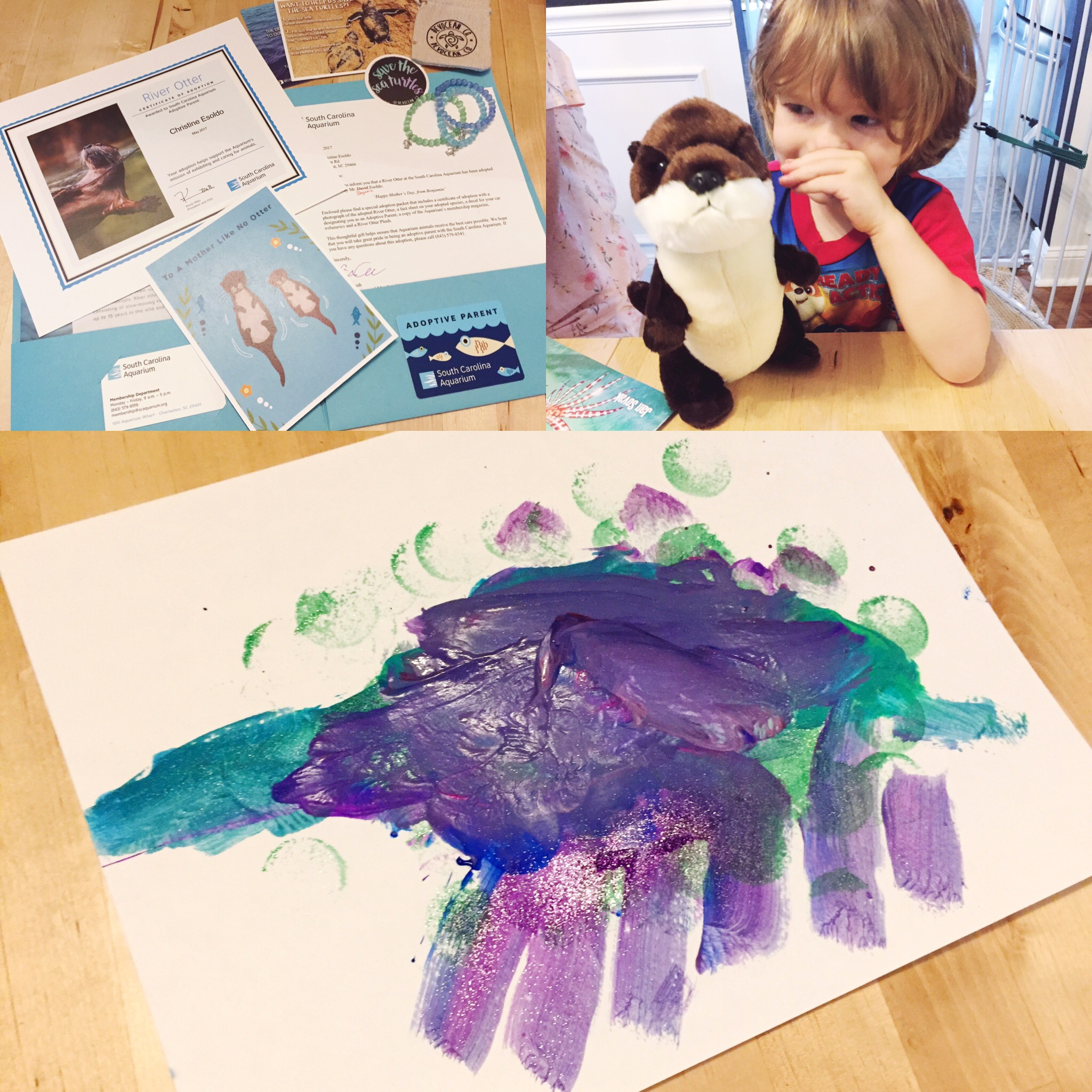 """MOther's day presents - adopted otter, sea turtle bracelets and a """"Dinosaur"""" painting by b"""
