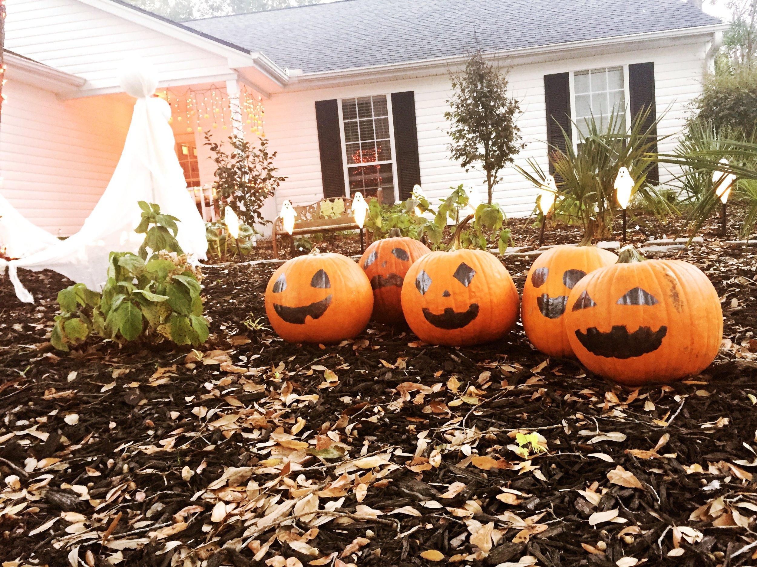 Our pumpkin patch - five little pumpkins