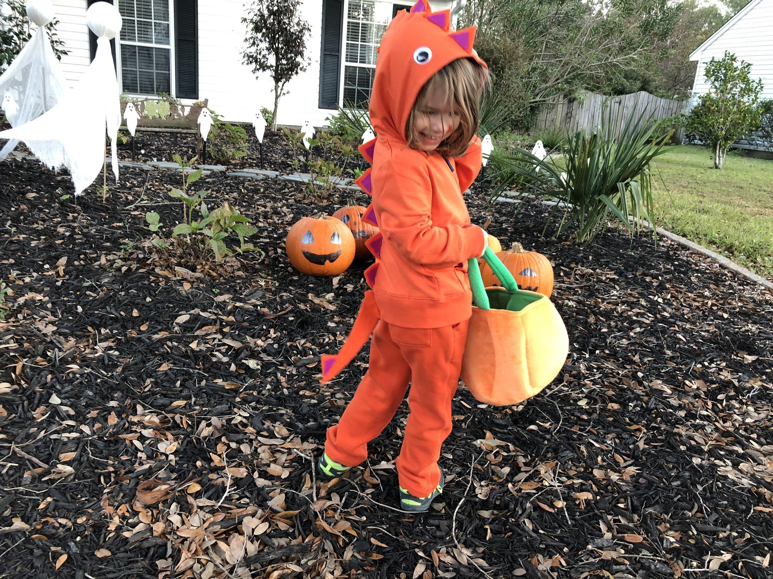 My little orange dinosaur