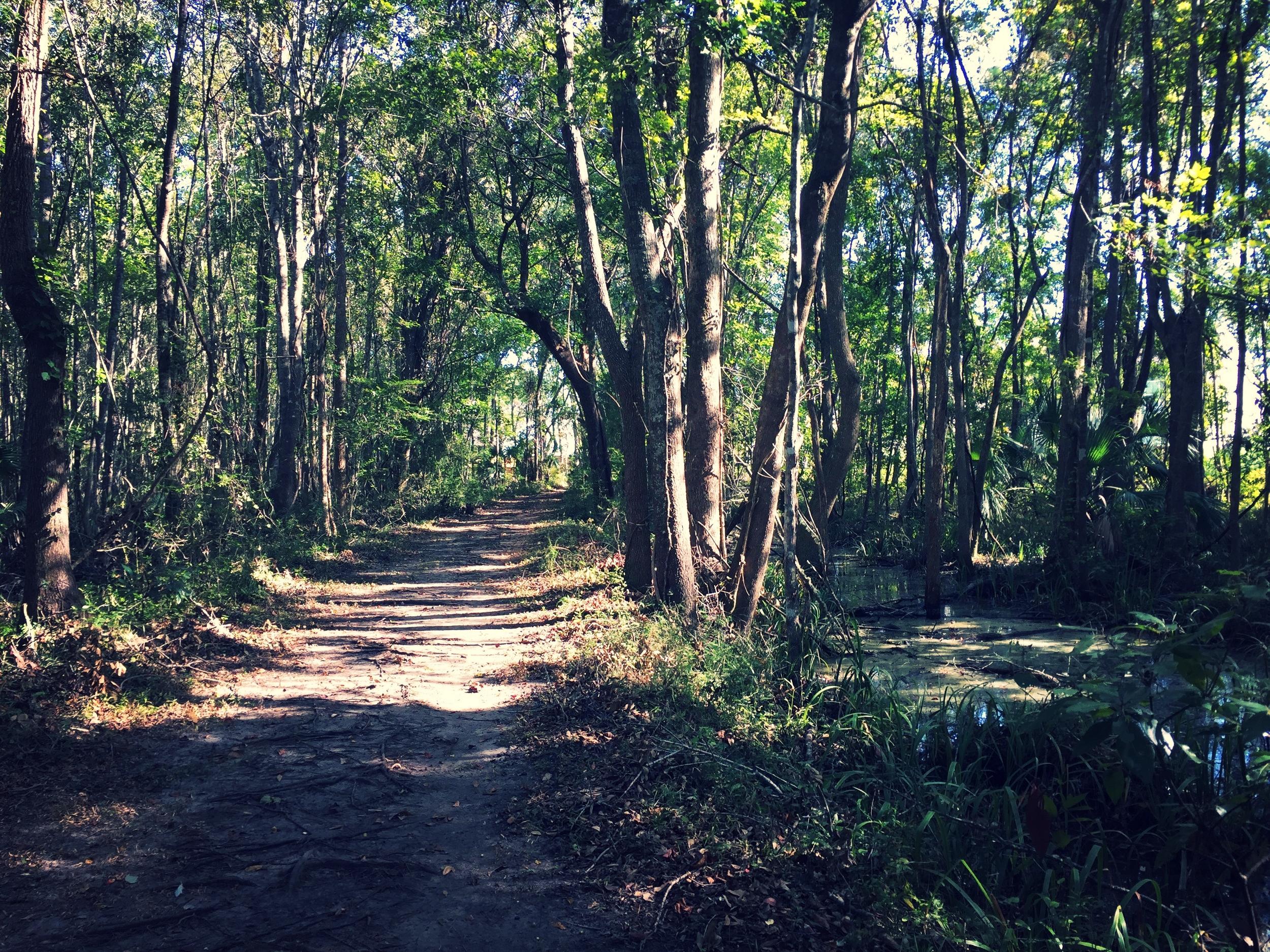 Neighborhood trails