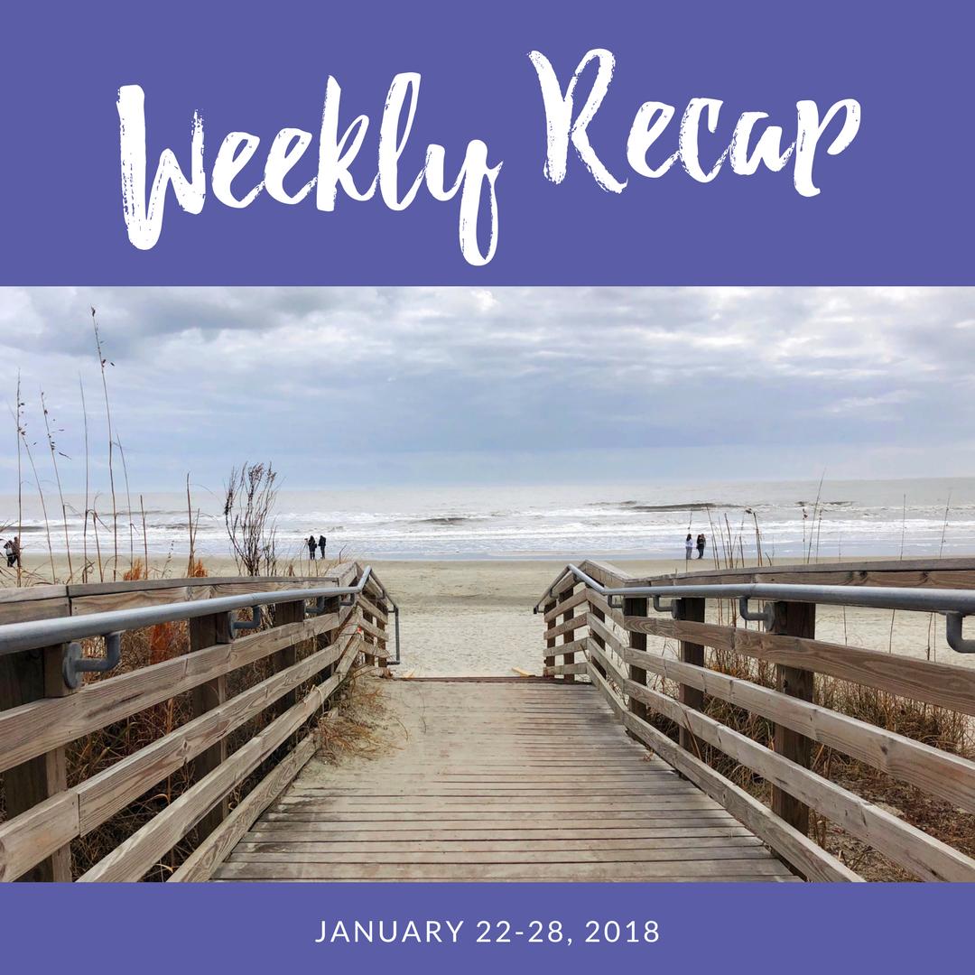 weekly recap january 22-28