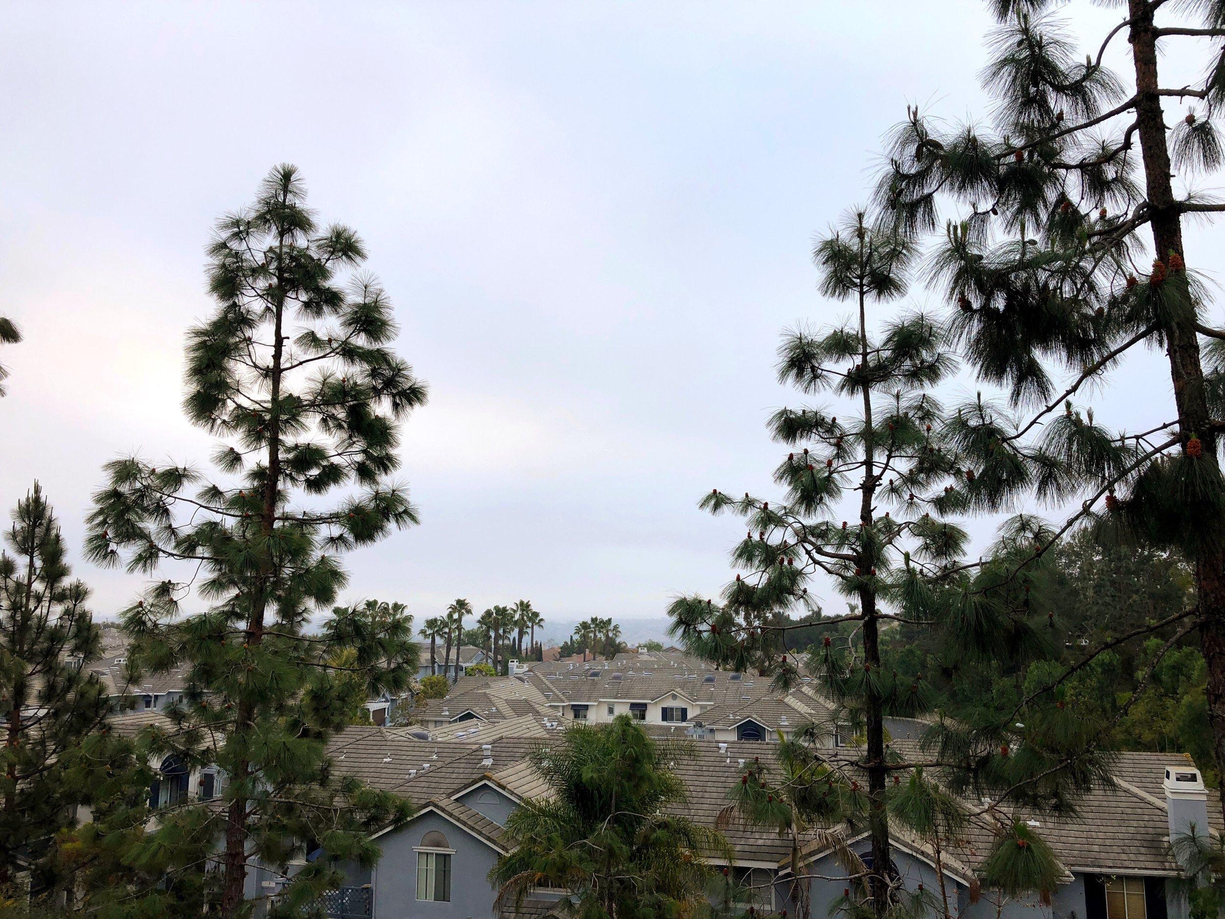 Running views - Hills!