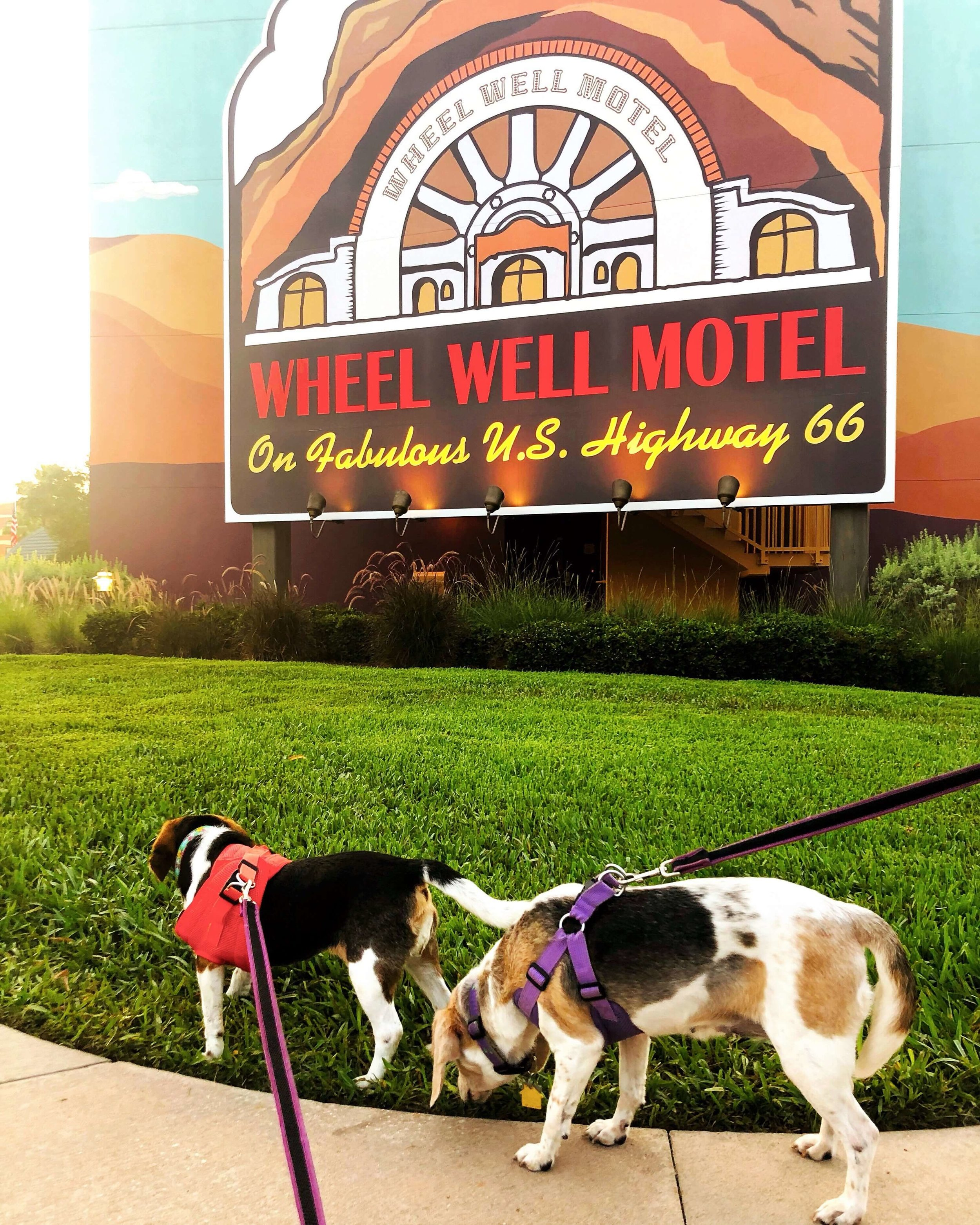 Ruby and Willow at Art of Animation Resort