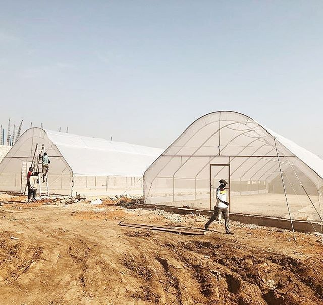 Continued progress on our two hydroponic greenhouses in Nigeria. Soon Isabel will be the first commercial hydroponic farm in Abuja. We look forward to our continued support in the local economy and continuing to advocate for sustainable farming practices in West Africa.