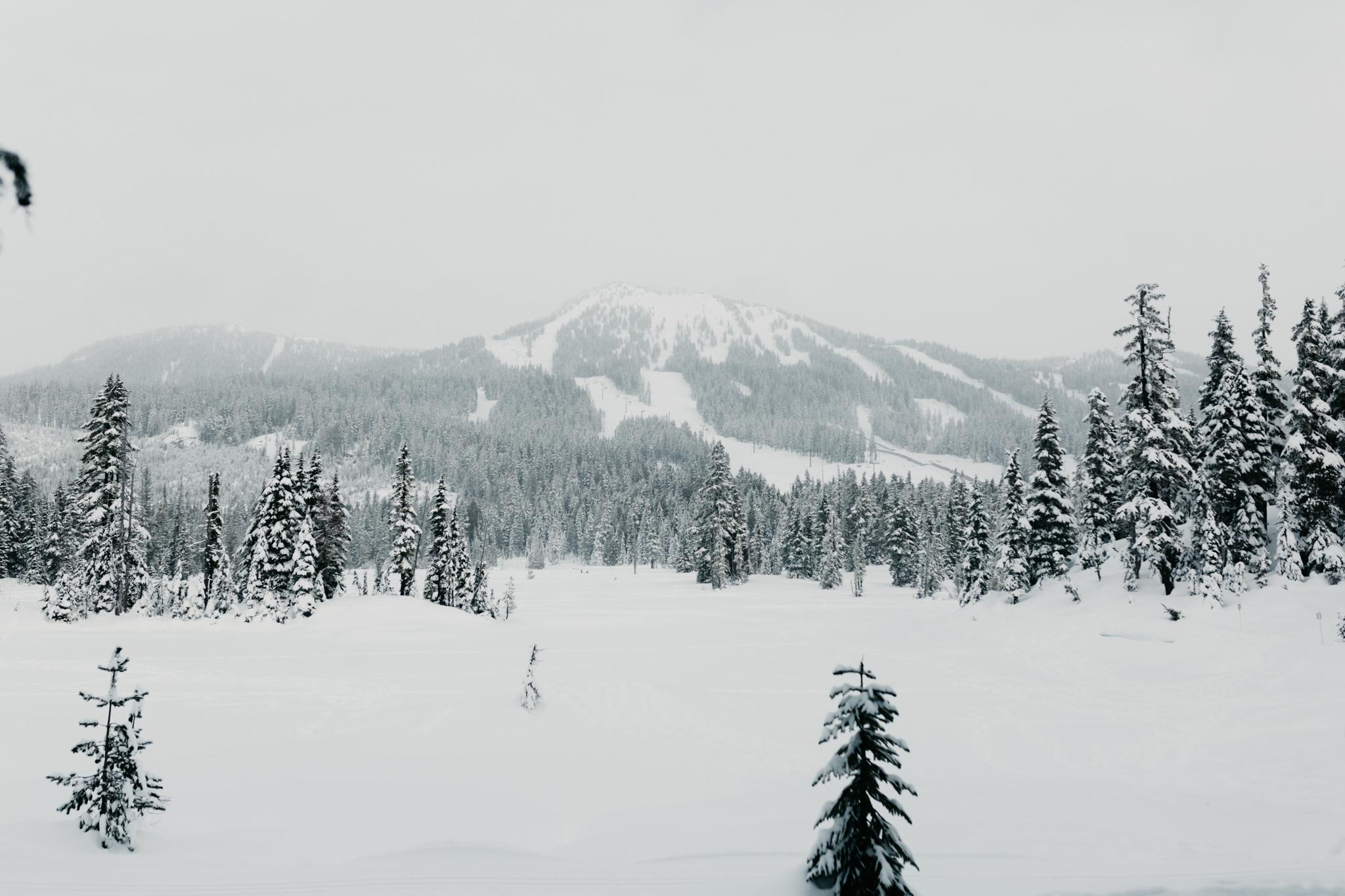 greg+jade-mount-washington-winter-engagement059.JPG