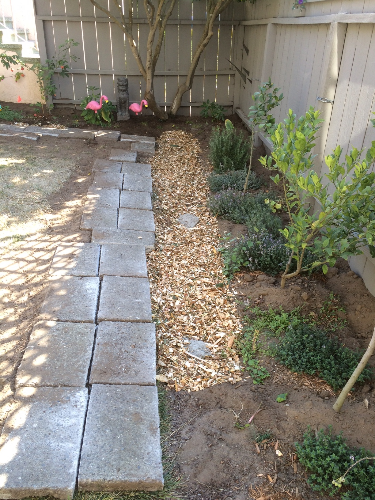 Laundry to Landscape Greywater Mulch Basin