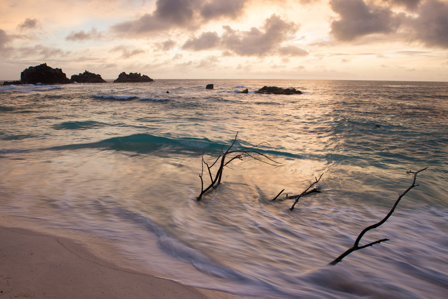 Indian Ocean and 'Roche Canon' island at sunset, Cousin Island Special Reserve, Seychelles
