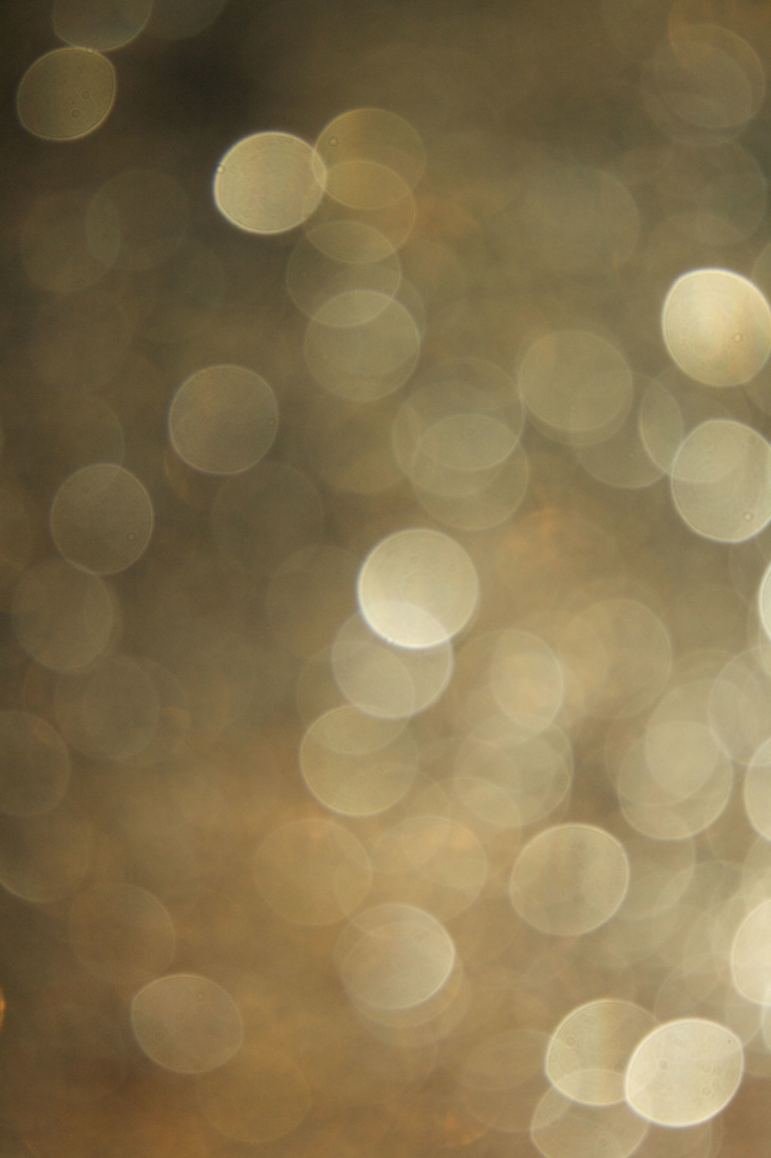 Blur18.jpg