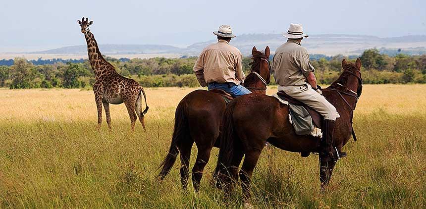 Watching_a_giraffe.jpg