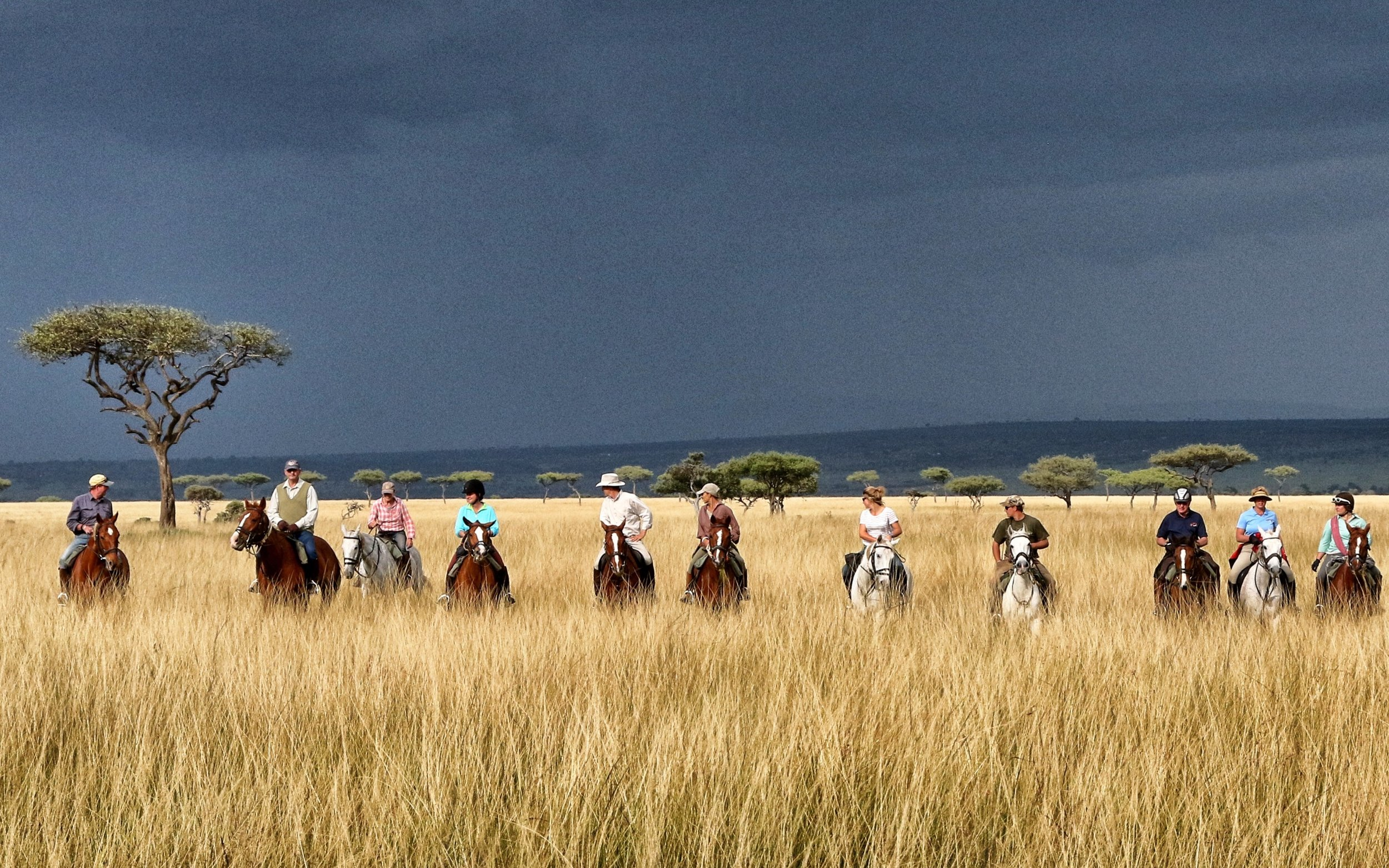Offbeat Safaris   Mobile riding safaris in the Masai Mara