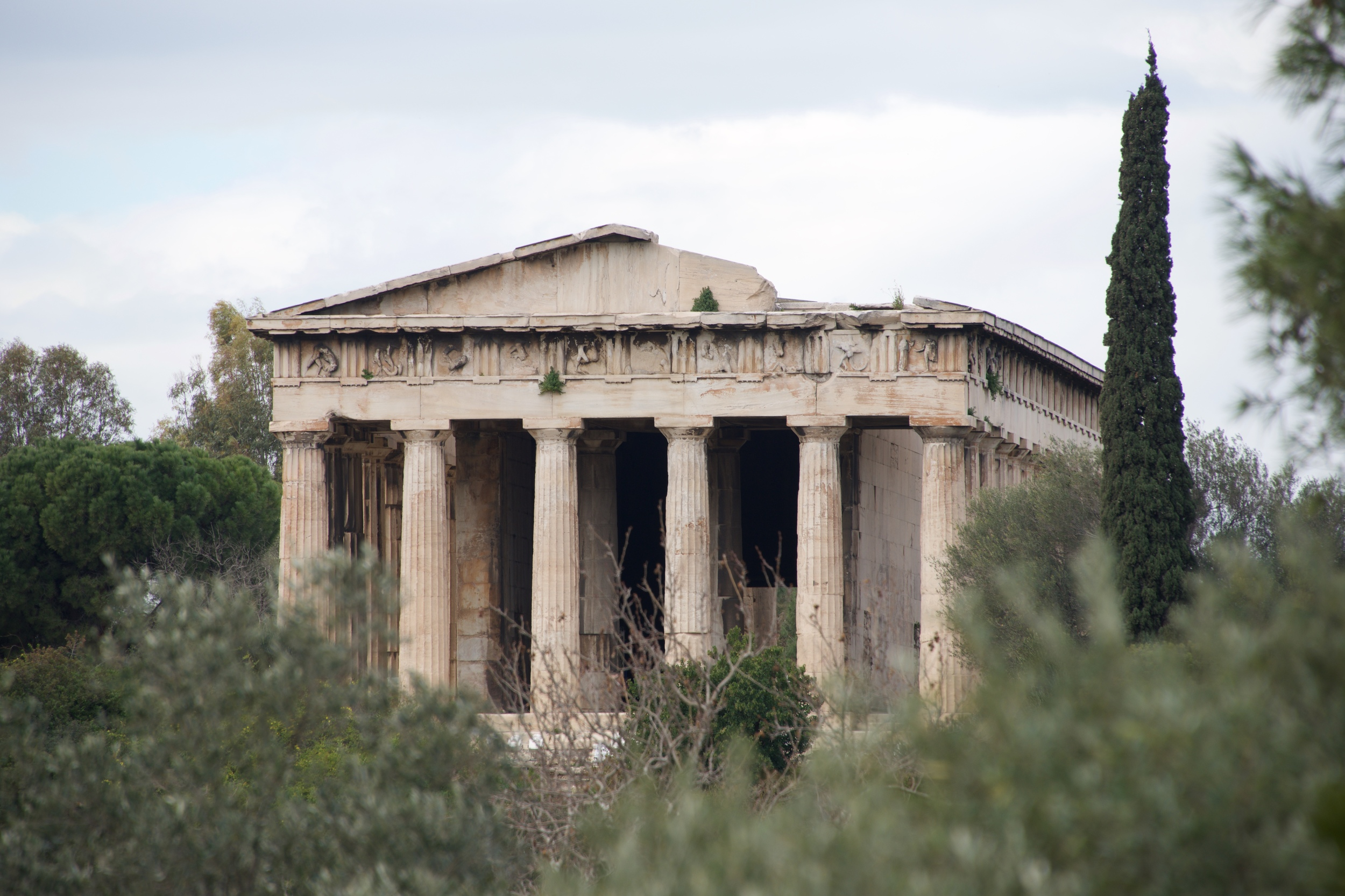 Cypress tree beside ruined Temple of Hephaistos.jpg
