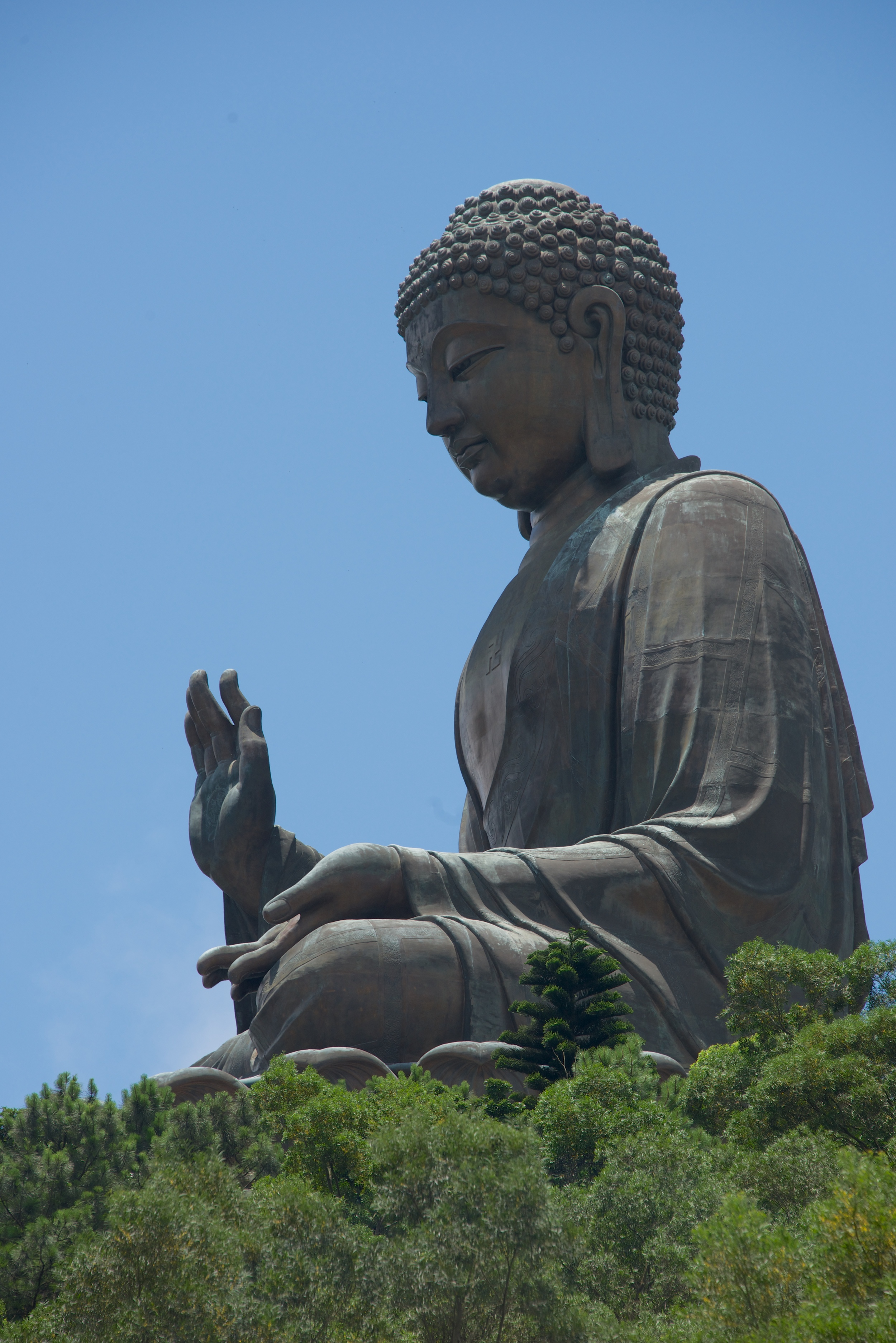 Big Buddha in profile