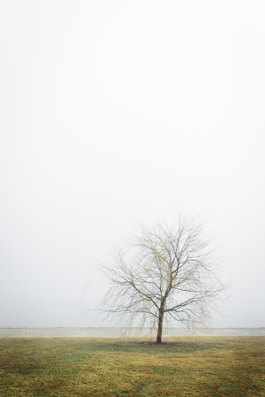 Lean+Timms+Canberra+Fog+(9+of+21).jpg