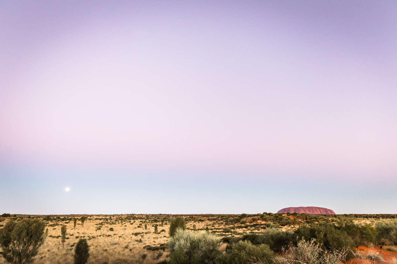 Lean+Timms+Uluru++(51+of+57).jpg