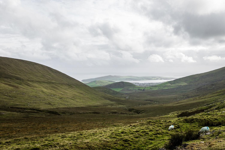 Ireland West Coast Lean Timms (44 of 45).jpg