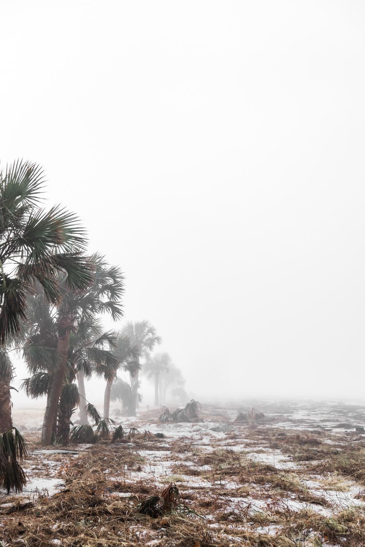 Hurricane Michael Lean Timms  (21 of 47).jpg