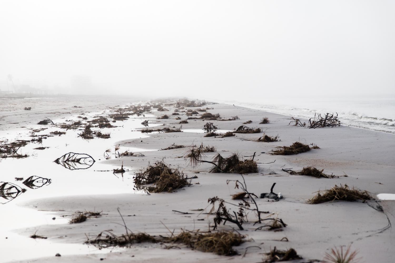 Hurricane Michael Lean Timms  (32 of 47).jpg