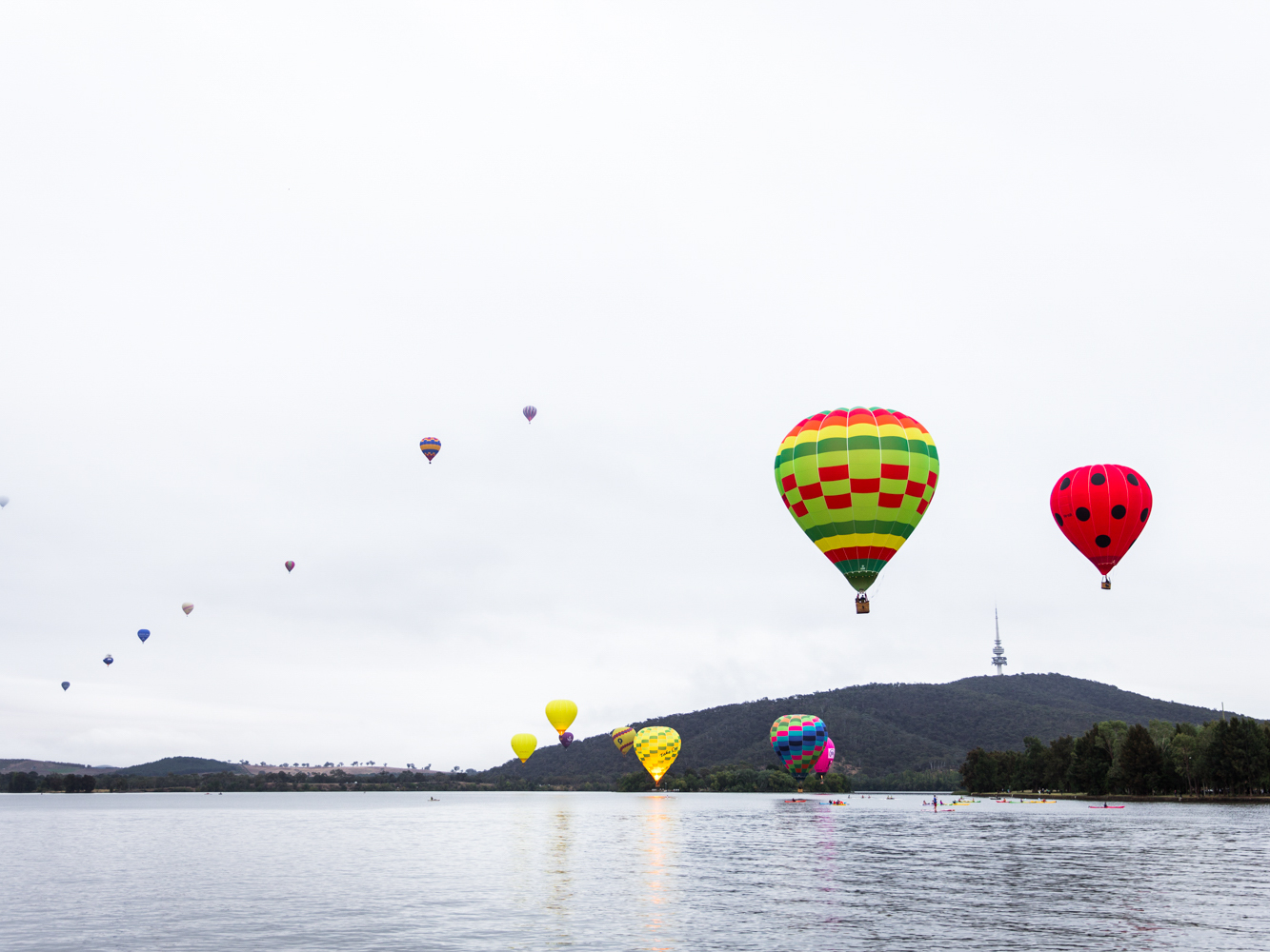 canberra -
