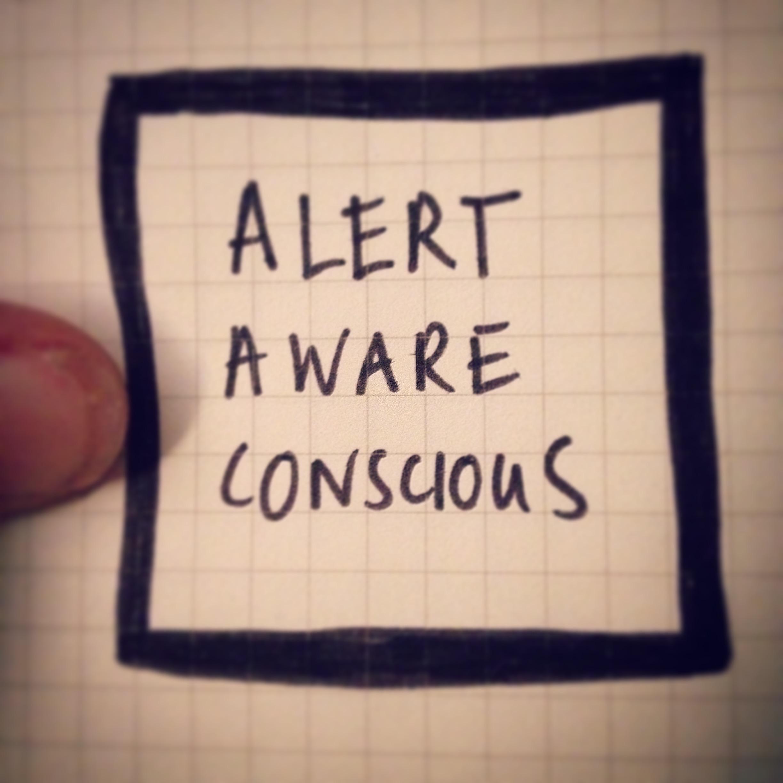 Alert aware conscious.jpg
