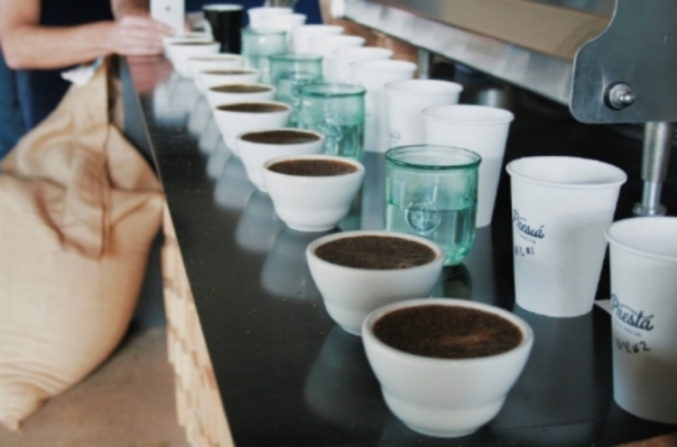 Choosing the next coffee offerings with a cupping