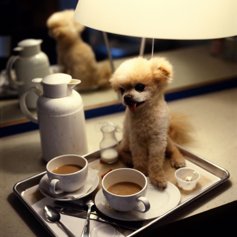 COFFEEfor website.jpg