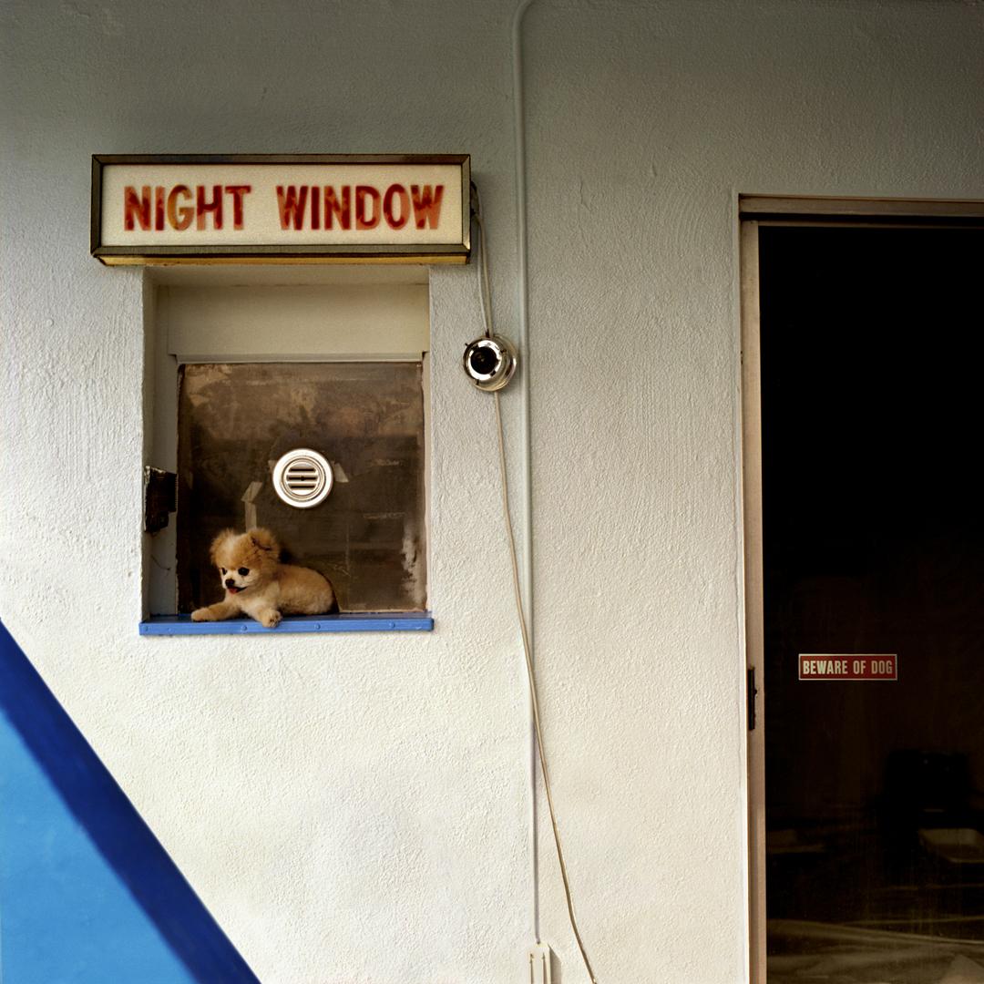 NIGHT WINDOWforwebsite.jpg