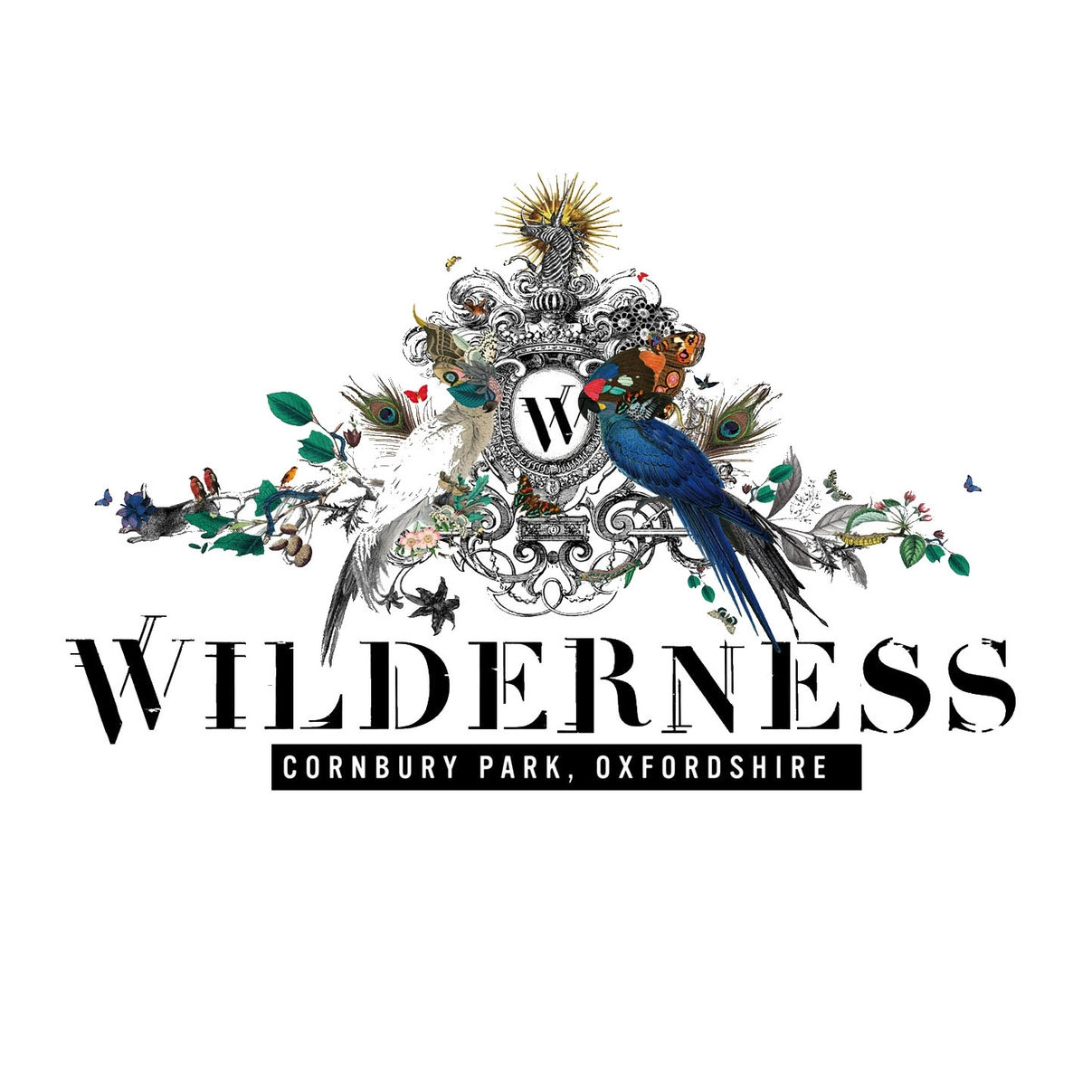 Wilderness-Logo31.jpg