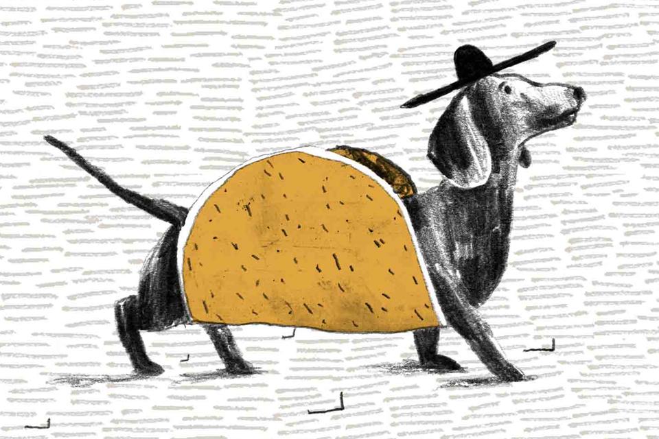 Taqado Art Activation Taco Dog