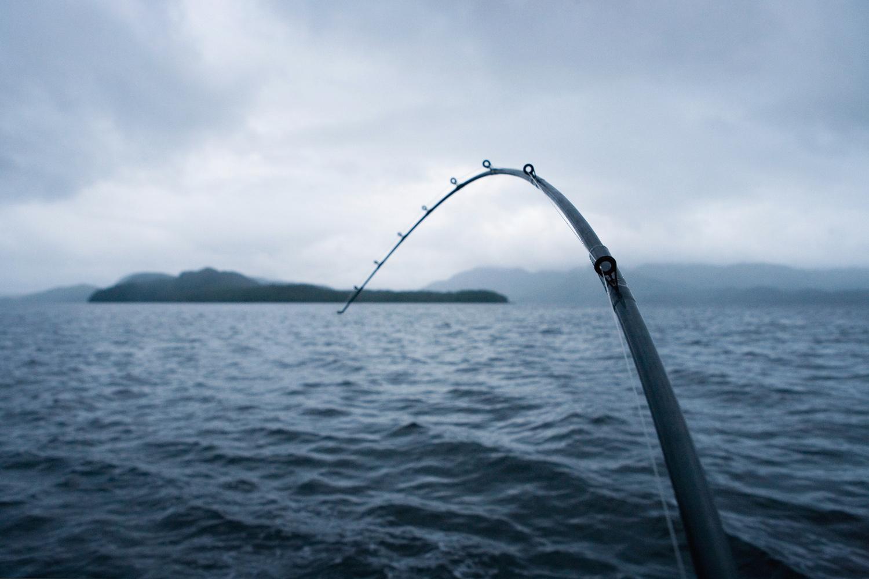 fc_fishing_01.jpg