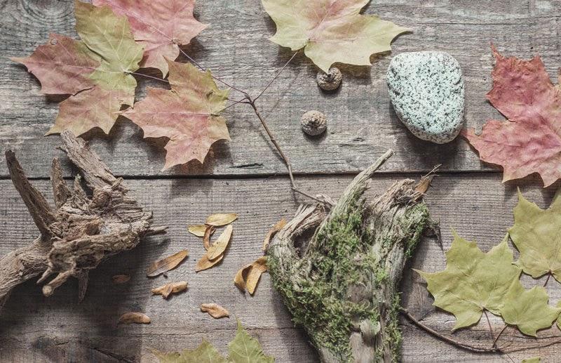 gathered-Autumn.jpg