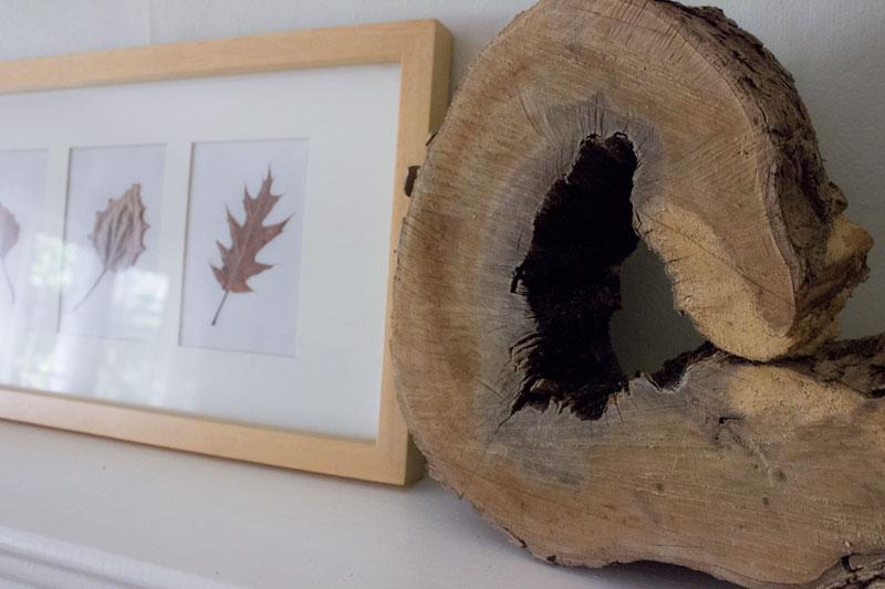 reclaimed wood slice art
