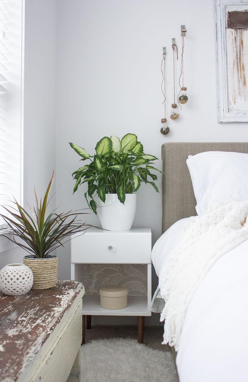 绿色的卧室里有DIY的灯泡水晶球