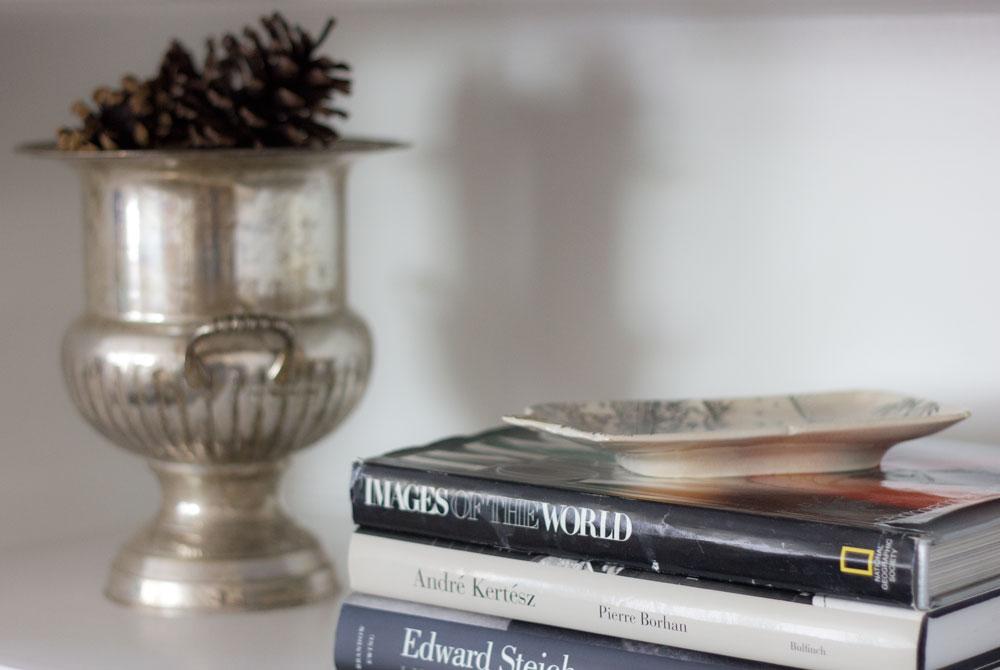books-and-pinecones.jpg