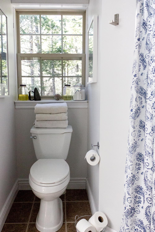用油漆和新浴帘简单快速地刷新浴室