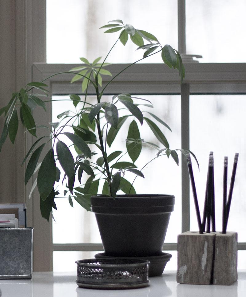 create a serene home office