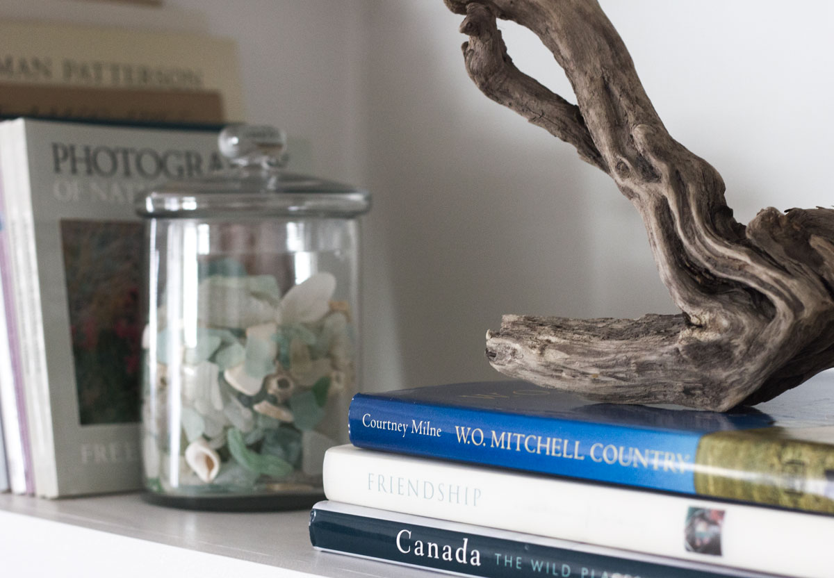 driftwood and shell collection as part of bookshelf styling
