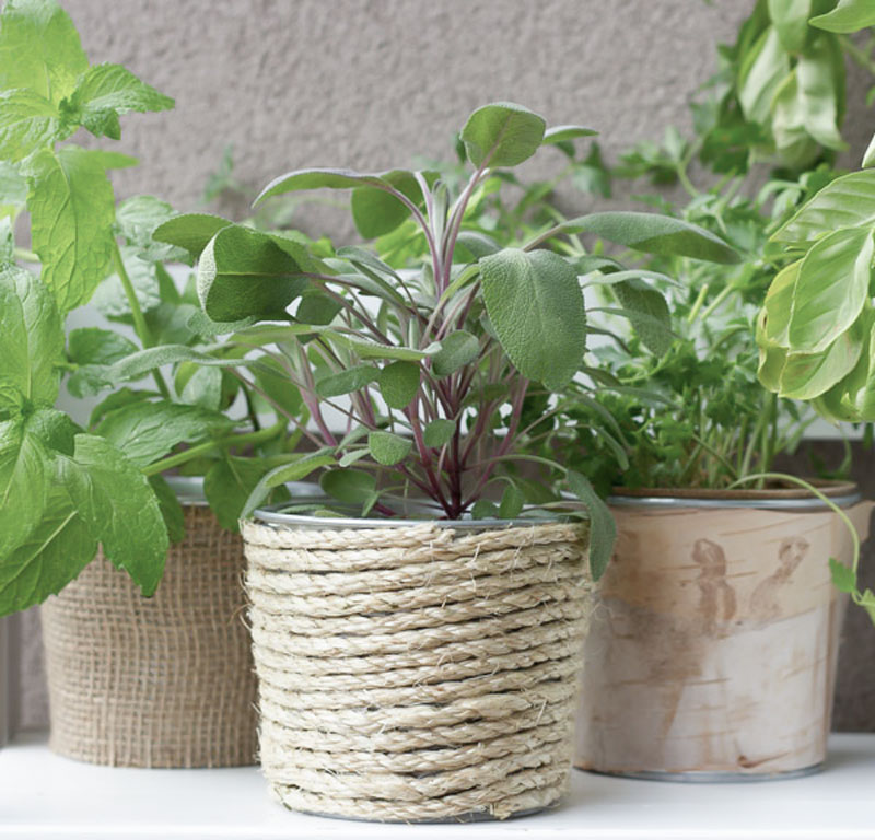Repurposed can planter wrapped in jute rope - click for full post