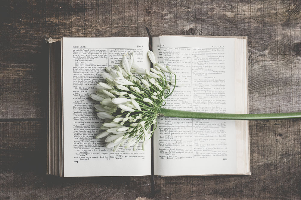 flower-and-book.jpg