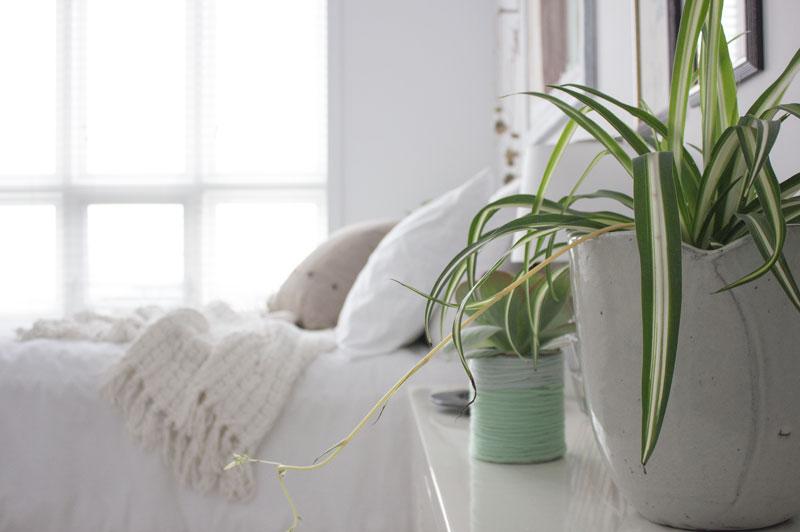 浅白色冬季卧室.jpg