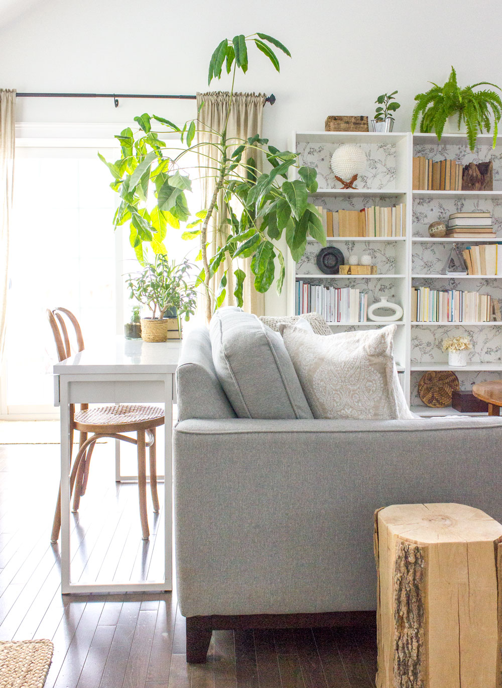 sofa-and-bookcase-and-desk.jpg