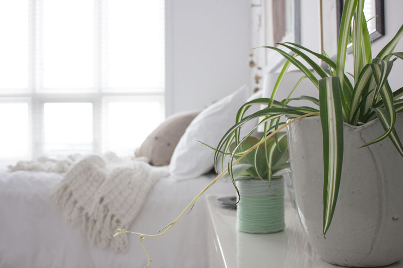 how to transition your home naturally for fall and winter