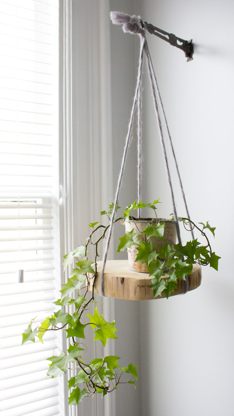 DIY round hanging wood plant shelf