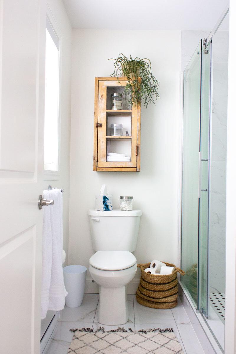 浴室里的植物