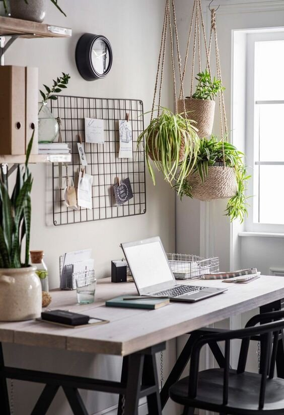 small home desk with plants