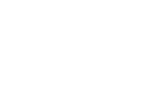 BörjeOlsson_Logotype_Vit.png
