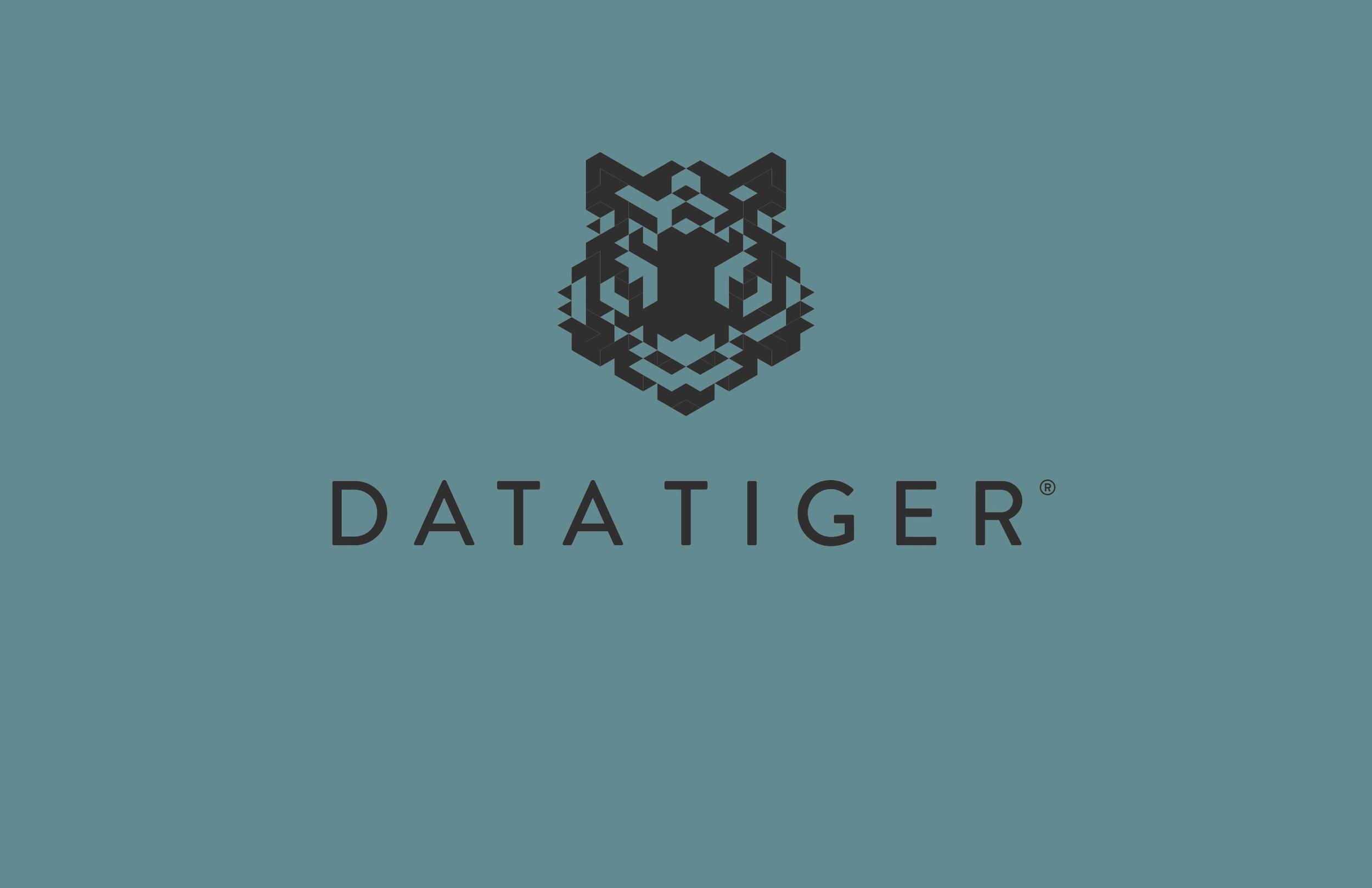 datatiger logo.jpg