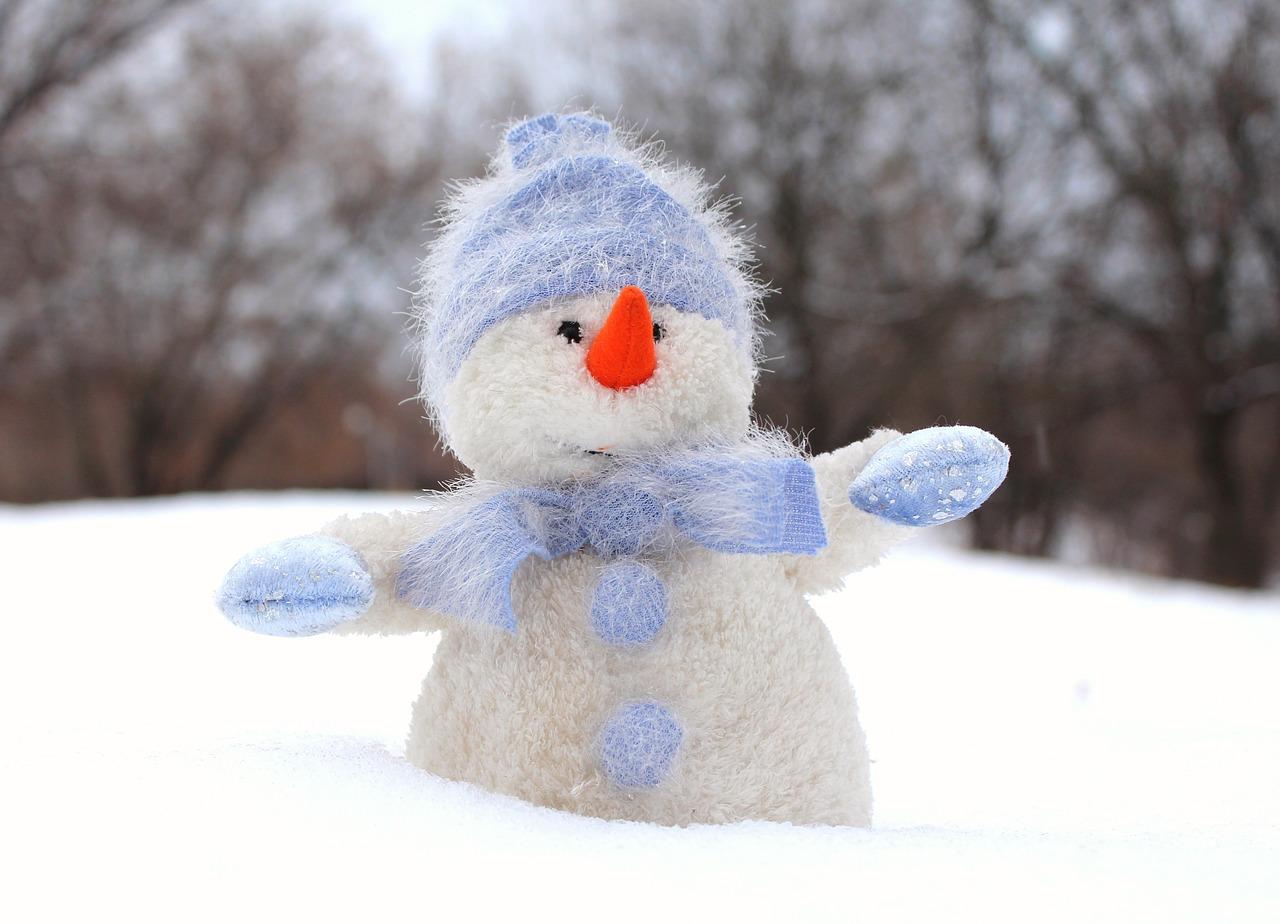 snowman-1072189_1280.jpg