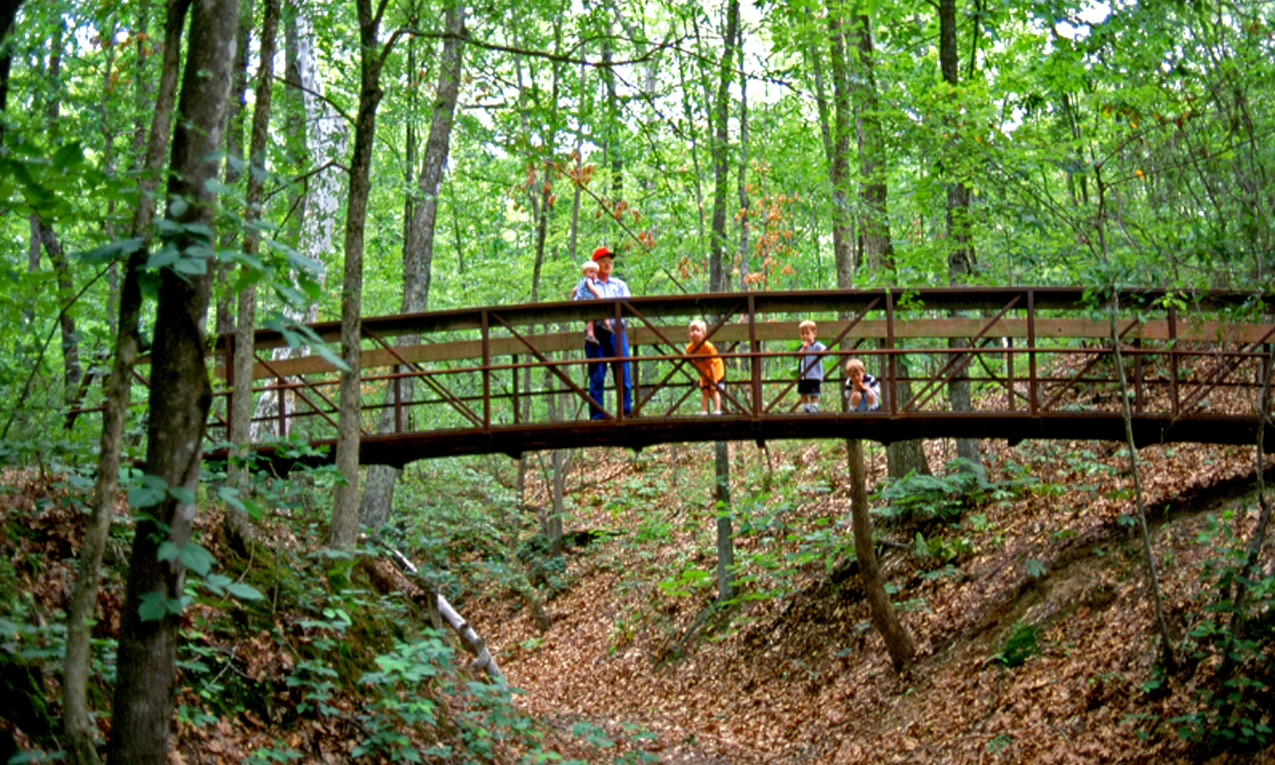 Even young hikers can enjoy Village Creek State Park.