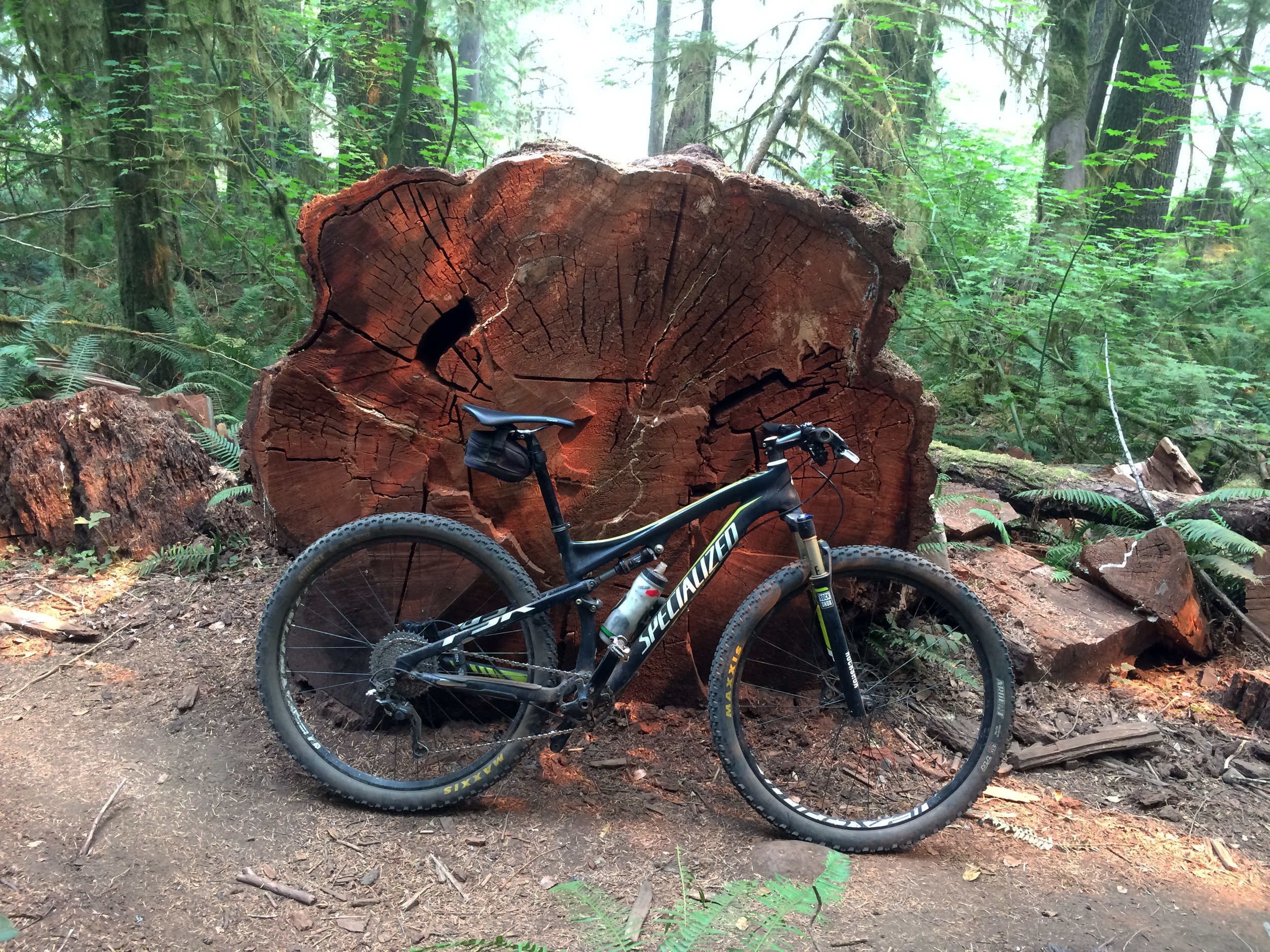 Top to bottom: John Fenger, frequent mountain biker, working his way through the rough lava section. A downed giant old growth conifer tree dwarfs Bob's bicycle in the Willamette Forest.