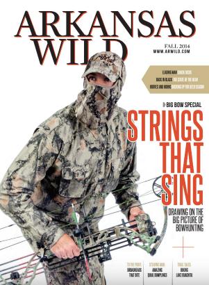 Wild 2014 3.png